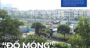 cac-nha-thau-xay-dung-lon-o-viet-nam-nha-thau-tq-92226614